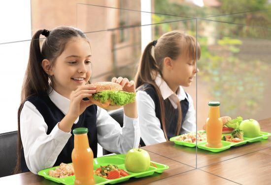 Mamparas para Comedores o Áreas Comunes 43545M TP Cristal Transparente